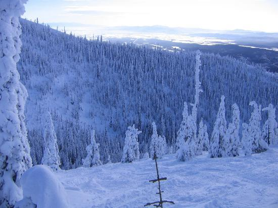 Whitefish, Монтана: Snow Ghosts (and hard terrain)
