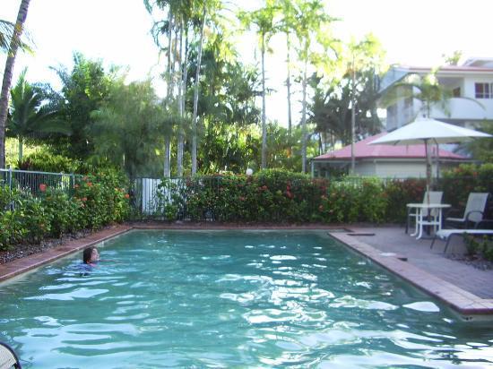 Tropical Reef Apartments : The Garrick Street pool