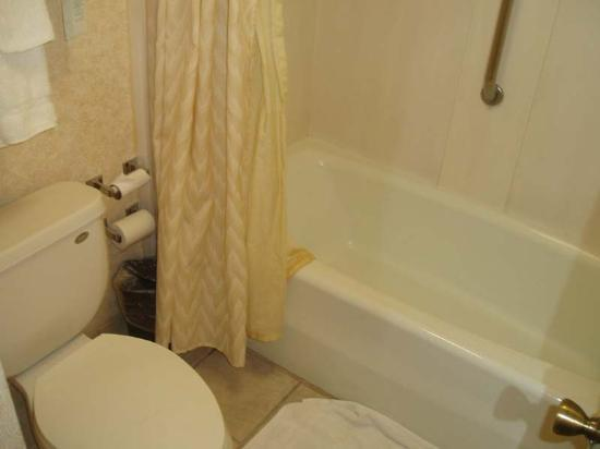 Embassy Suites by Hilton Phoenix Airport: small bathroom, but clean