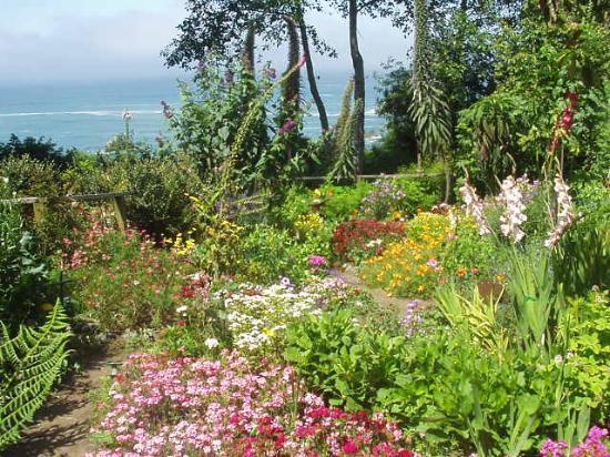 Trinidad, CA: The garden next to our room