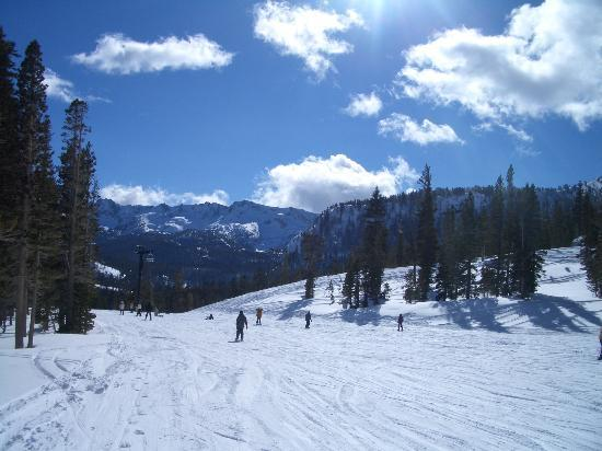 Mammoth Mountain: Mammoth