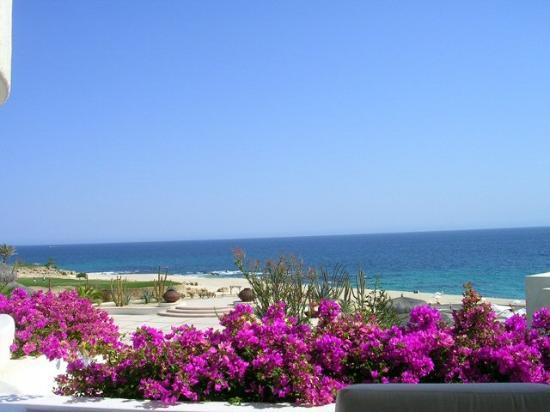 Las Ventanas al Paraiso, A Rosewood Resort: Another stunning view from our deck