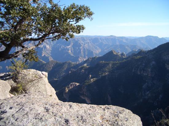 Hotel Cabanas Divisadero Barrancas: View of Copper Canyon