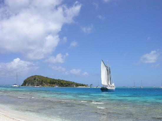 St. Vincent and the Grenadines: View of Baradel with sailboats and schooner.