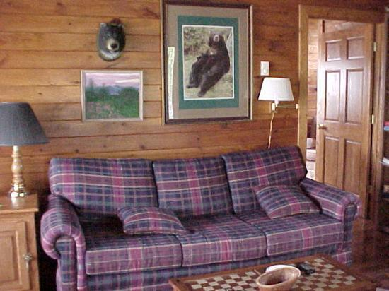 Azalea Inn Bed and Breakfast: Living room