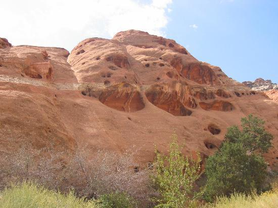 SkyRidge Inn Bed & Breakfast: Capitol Reef Rock formations