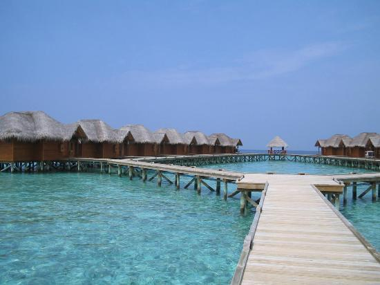 Fihalhohi Island Resort Photo