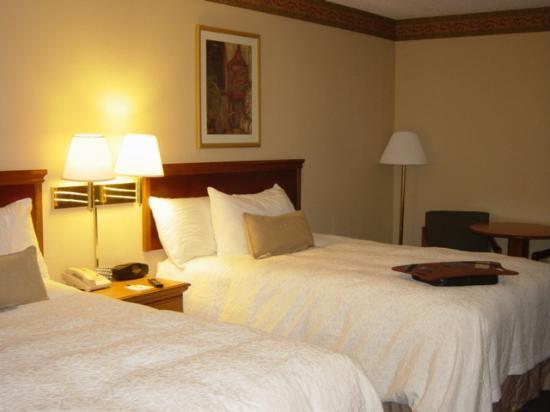 Hampton Inn Jacksonville Downtown I-95 : bedroom