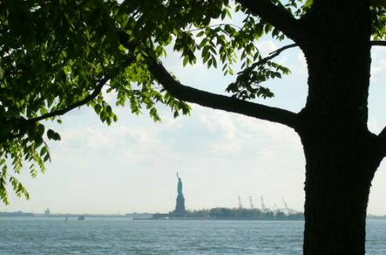 New York City, NY: Lady Liberty, framed