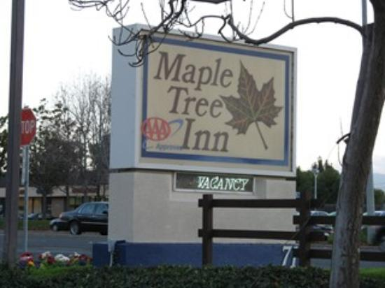 Maple Tree Inn: Front Sigh