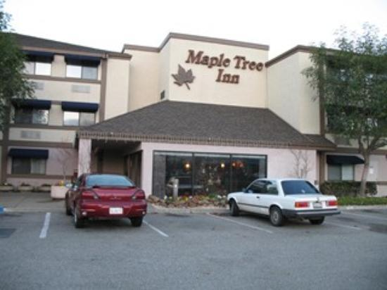 Maple Tree Inn: Front View