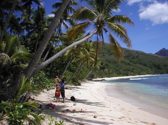 Octopus Resort: Beach perfection