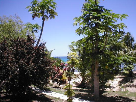 Octopus Resort: View from bure