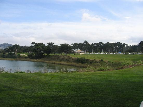 Harding Park Golf Course 18th Picture Of Harding Park Golf Course San Francisco Tripadvisor