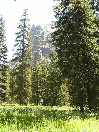 Parco nazionale di Sequoia e Kings Canyon, CA: Tokopah Falls trail scenery