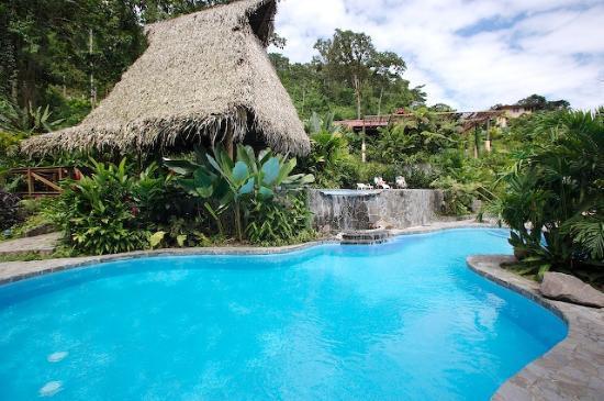 Lost Iguana Resort & Spa : The pool and pool bar
