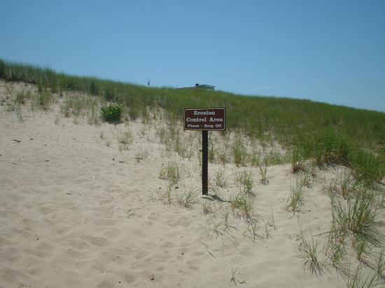 Race Point Beach: Start of the beach