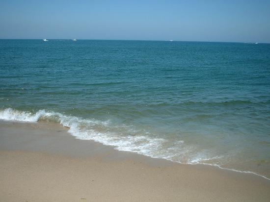 Race Point Beach: The ocean