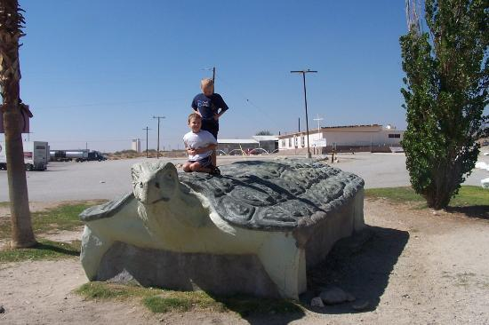Cabazon Dinosaurs: Giant Turtle