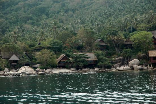Sensi Paradise family bungalow
