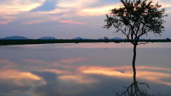 Mosetlha Bush Camp & Eco Lodge: sunset at madikwe