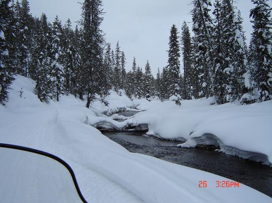 Yellowstone Inn: Two Top trail loop riverside