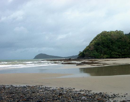 Daintree National Park : Cape Tribulation