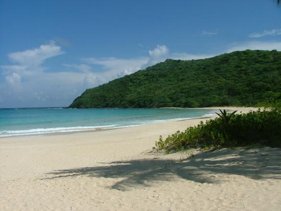 Culebra Beach Villas: The beach