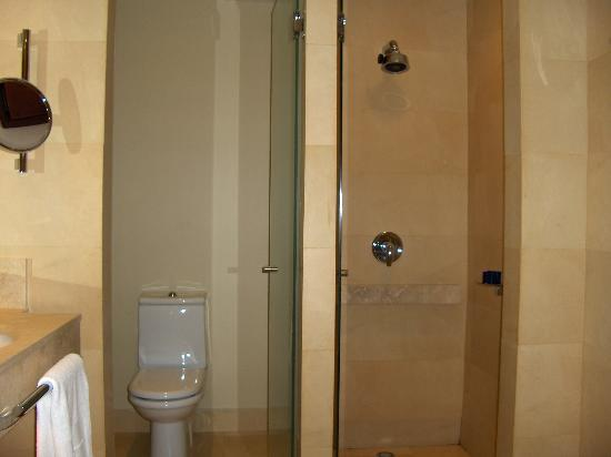 Hotel del Mar: Toilet and shower