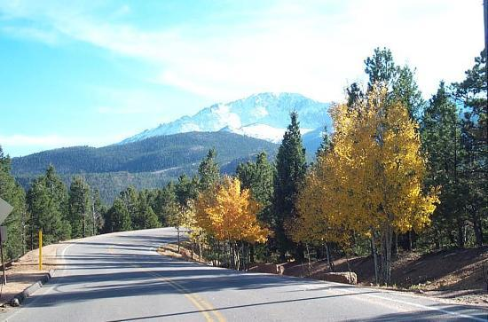 Peak to Peak Scenic Byway: Glowing Aspens