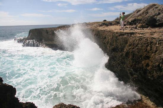 Ka'ena Point State Park: one view