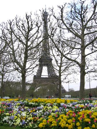 Paris, France : Flowers