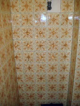 Radio Inn: Great tiles in the toilet