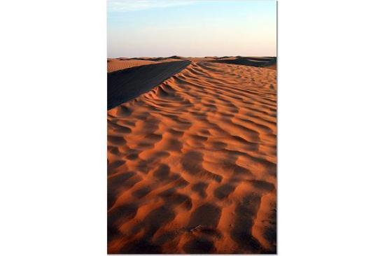 Sahara Desert : Grand Erg (Sand Seas) Oriental