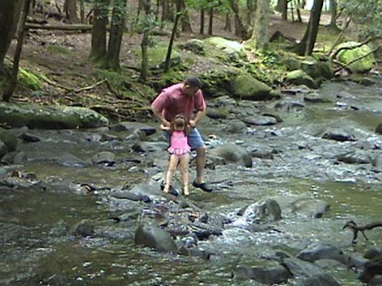 Old Smoky Mountain Cabins: Playing in the mountain stream at Cades Cove Nat'l Park picnic area