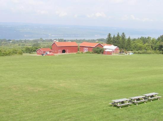 Watkins Glen, Estado de Nueva York: View toward Seneca Lake from the winery