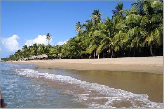 Frigate Bay Beach Resort St Kitts