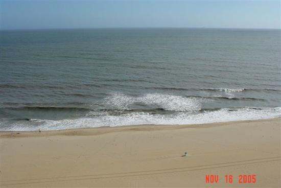 Residence Inn by Marriott Virginia Beach Oceanfront : View from the Room