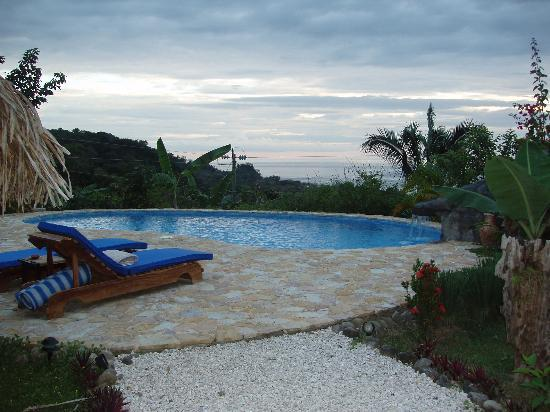 Casa Chameleon Hotel Mal Pais: Pool - ocean in the background