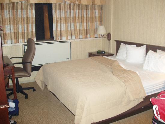 Holiday Inn Toronto International Airport : room