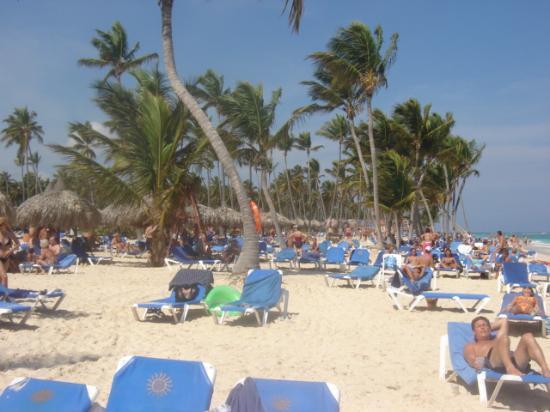 Grand Bahia Principe Bavaro: Le terrain de volley