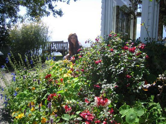 Sooke Harbour House: Colorful blooms everywhere