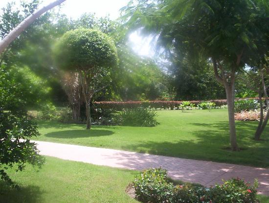 Iberostar Hacienda Dominicus: grounds