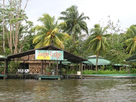 Tortuguero Jungle Lodge: From the River