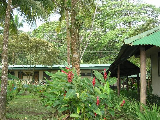 Tortuguero Jungle Lodge: Grounds