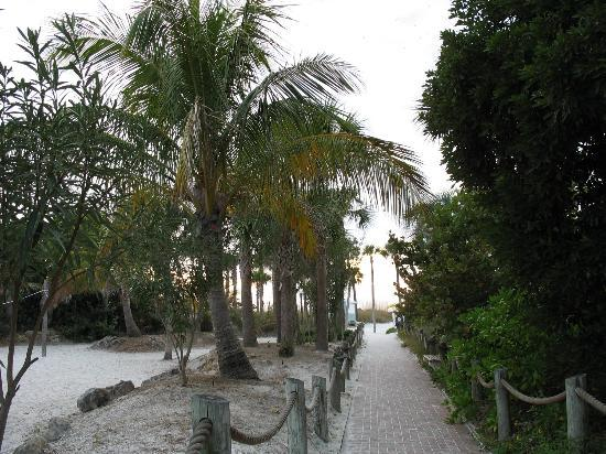 Tropical Beach Resorts: Pathyway to beach from rooms