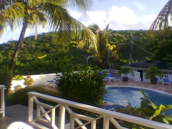 Dickenson Bay Cottages: the view