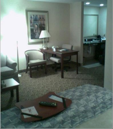Hampton Inn & Suites Amarillo West Foto