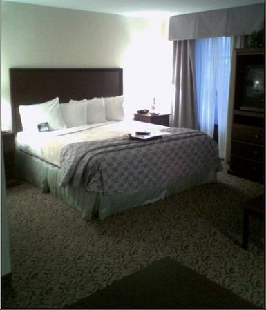 Hampton Inn & Suites Amarillo West Bild