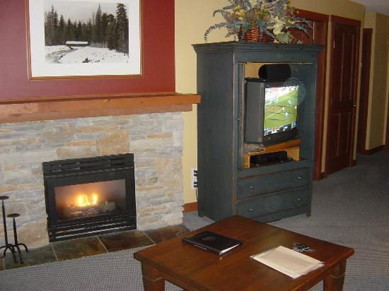 Horstman House: Fireplace in 1 BR unit